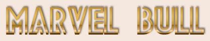 MARVEL BULL
